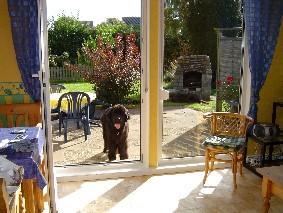 Hunde sind in unserem Ferienhaus herzlich willkommen